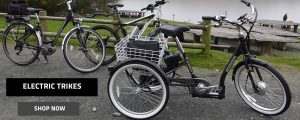 Shop Electric Trikes